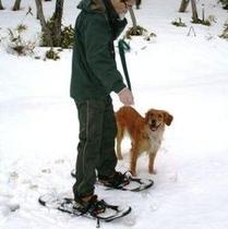 【スノーシュー】愛犬も一緒にお楽しみいただけます。