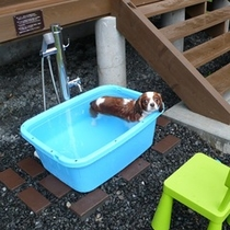 【ドッグヴィラログスイート】愛犬用温泉