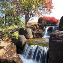 【レジーナの森】敷地内には広大な自然が広がっております。
