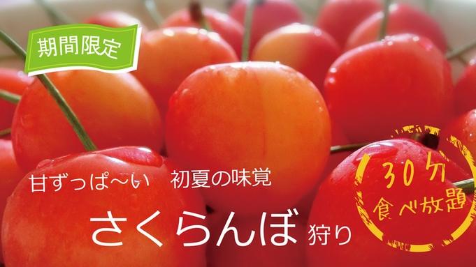 【さくらんぼ狩り】フルーツ大国・信州を満喫!初夏の味覚・さくらんぼを味わう果物狩りプラン