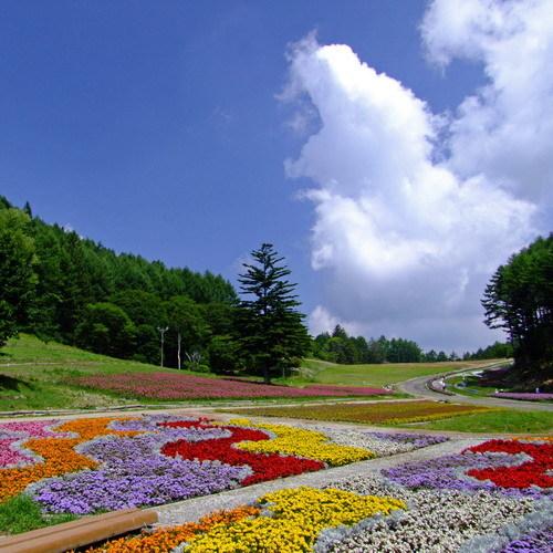 <ヘブンスそのはら> 山頂付近の高原には爽やかな風が吹き抜けます