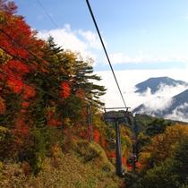 <ヘブンスそのはら> 秋の紅葉と雲海