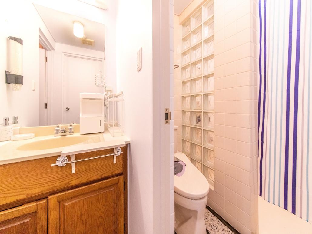 MOON LIGHT(301号室)コンドミニアムタイプ Aルーム内シャワールーム・トイレ・洗面所