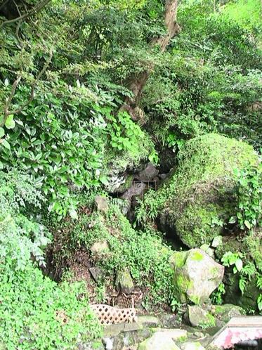 山荘横の滝