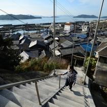 田土浦坐神社(たつちのうらにしますじんじゃ)の階段