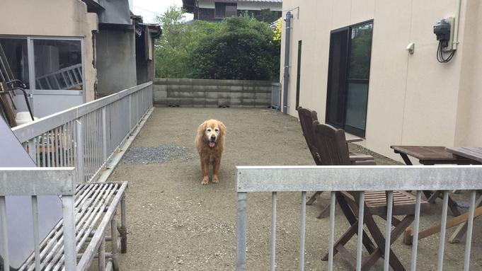 【秋冬旅セール】【素泊り】犬好き歓迎!アットホームでゆっくり寛げるホステル〜日本庭園に癒される〜