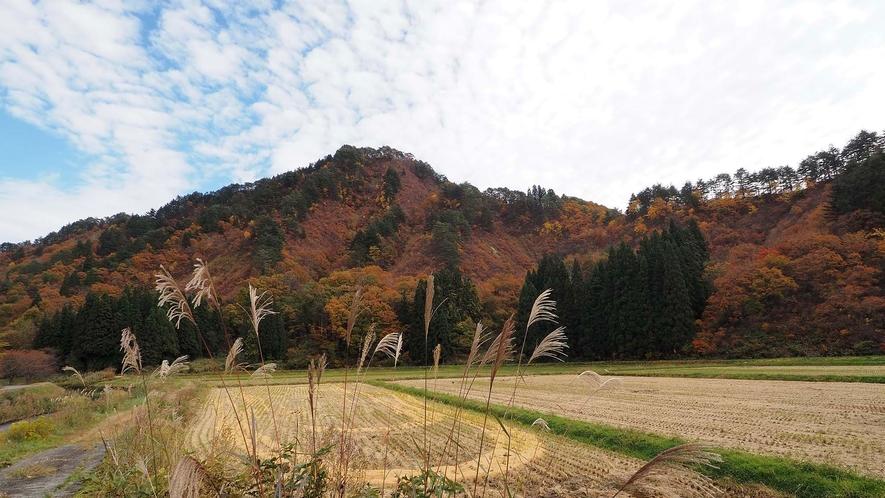 ・山々が色付く季節には紅葉もお楽しみいただけます。