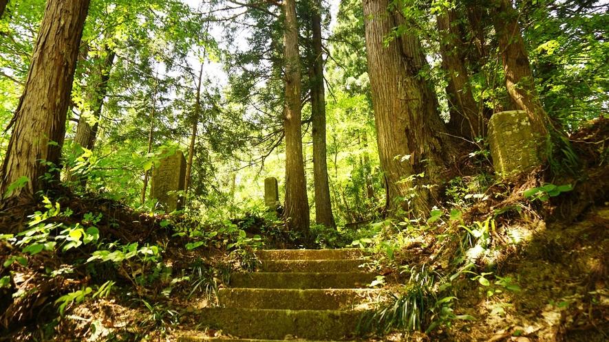 ・弘法岩屋までの登道。お散歩に是非行って頂きたい名所です。