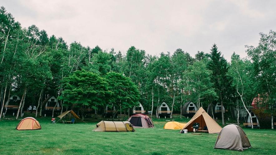 キャンプエリア
