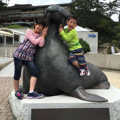お子様に大人気!体験型水族館「城崎マリンワールド」へは当館から車で約120分