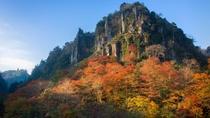 【周辺】一目八景:若葉もみじの新緑から錦もみじの紅葉期まで、一年中鮮やかな景観を見せてくれます。