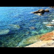 こんなに透き通った海が当館から歩いてすぐの磯崎港にあります!秘境磯崎に是非旅に来てください♪