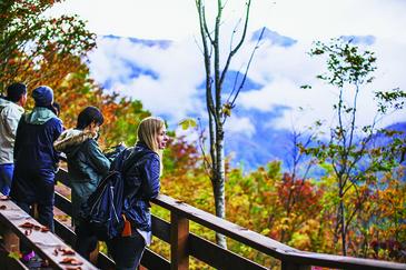 北尾根高原敷地内の森の中のウォーキング(30分〜1時間)