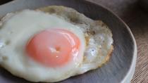 *朝食一例/卵料理