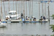 【レジャー】江戸川河口のハゼ釣り