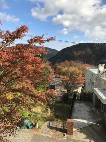202 和室からの眺望(紅葉の季節)