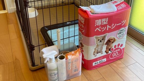 ワンちゃんと泊まれるコテージKOBUSHI(15kg以下)