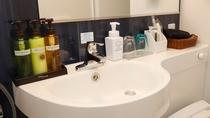 【セミダブルルーム洗面所】大きい鏡付き