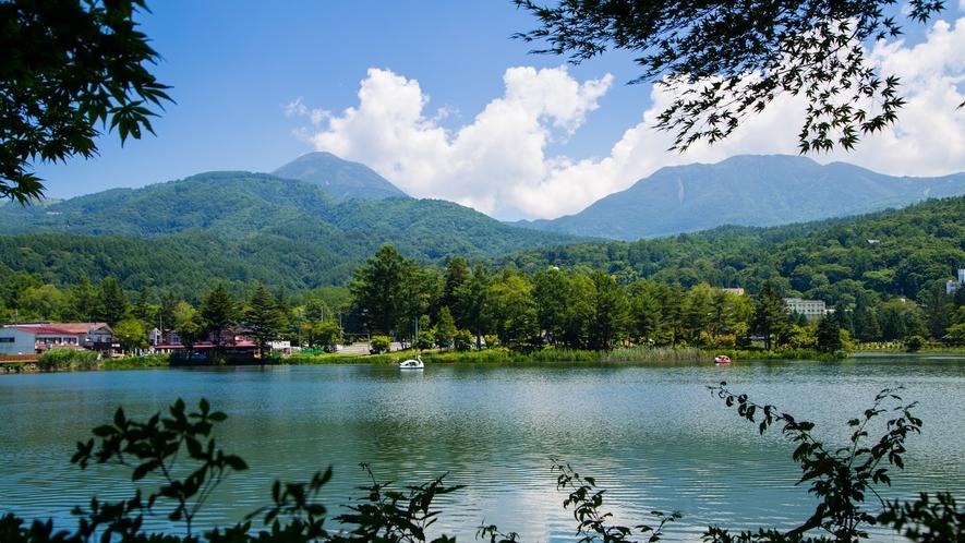 【周辺】夏の蓼科湖。