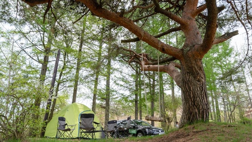 【テントサイト】オートキャンプ専用・電源付きのスペースもございます。
