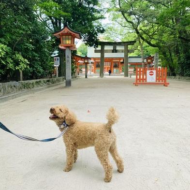 【ペット可】【愛犬と一緒に宿泊OK!】広々空間でゆったりくつろぎプラン