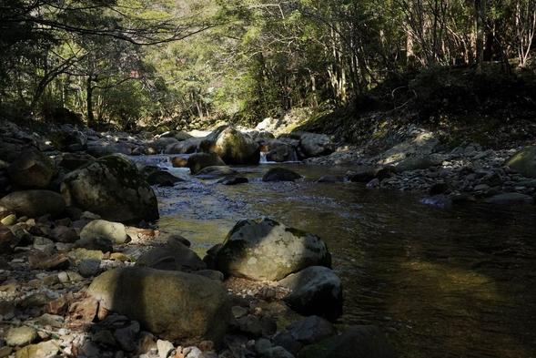 大自然を感じるテントサウナ体験付プラン|1泊2食付|森を眺めながら究極のリラックス体験を!