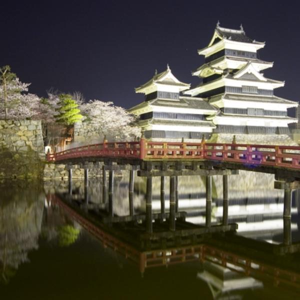 【松本城 桜祭り】当館から、車で7分のところにあります。