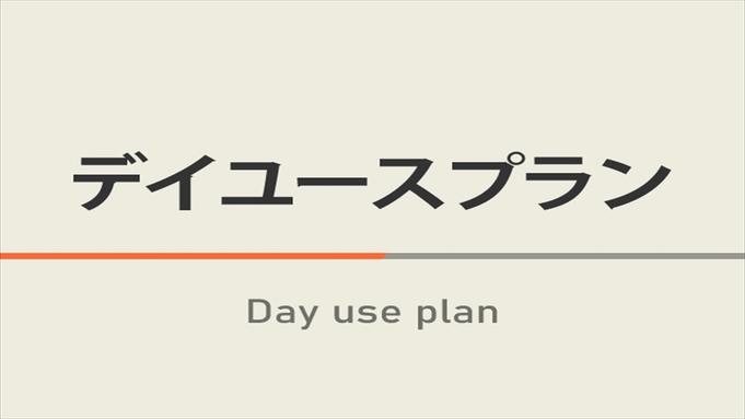【日帰り】デイユース・テレワークプラン15時〜23時の間で最大4時間利用!【高速Wi-Fi】