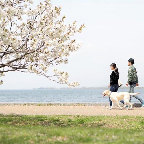 当館より徒歩5分の豊公園。愛犬とのお散歩に最適です。