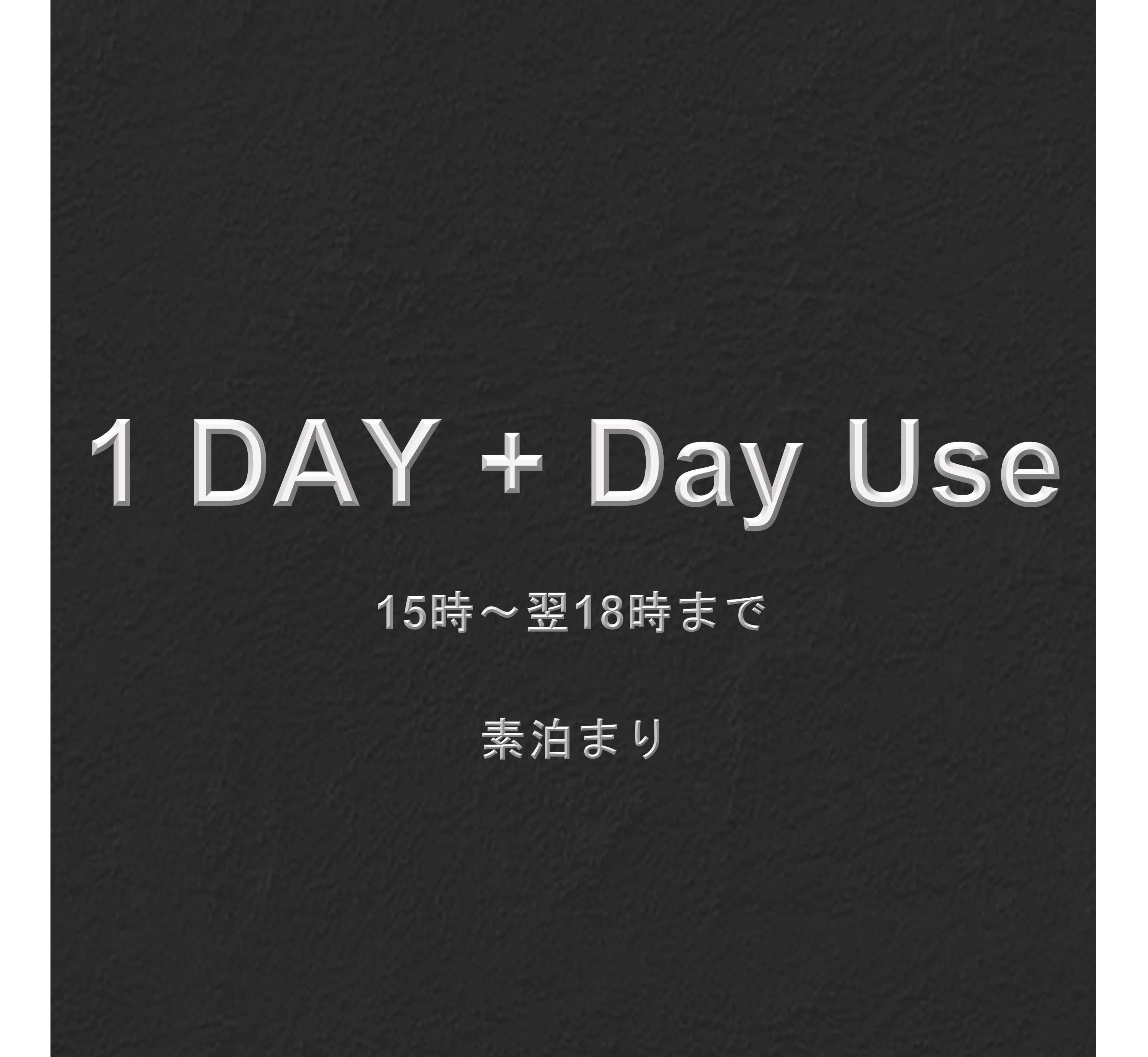 【1泊+デイユース (素泊まり)】