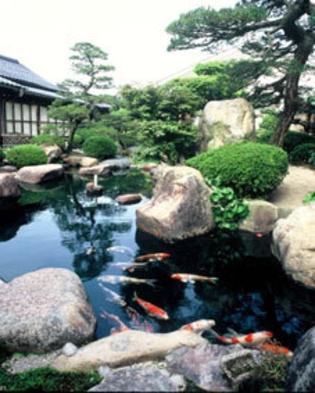 日本海の幸たっぷり・・【島根和牛】も【のどぐろ】も