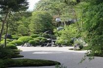 夏の美術館庭園