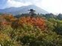 大山寺の秋