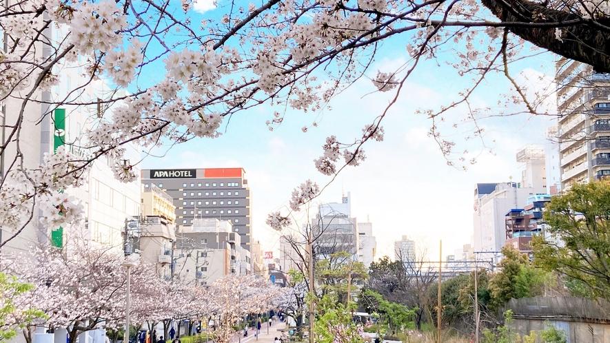 外観【春】