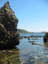 恵比須島 岩