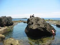 恵比須島と子供①