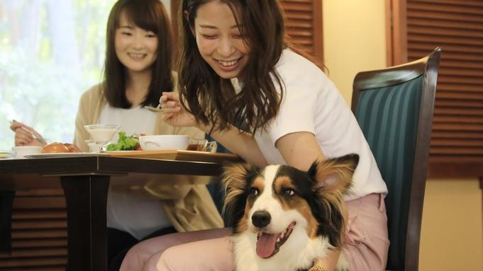 【2大特典付きタイムセール】基本プランが20%OFF&わんちゃん無料♪愛犬との春旅はこれで決まり★