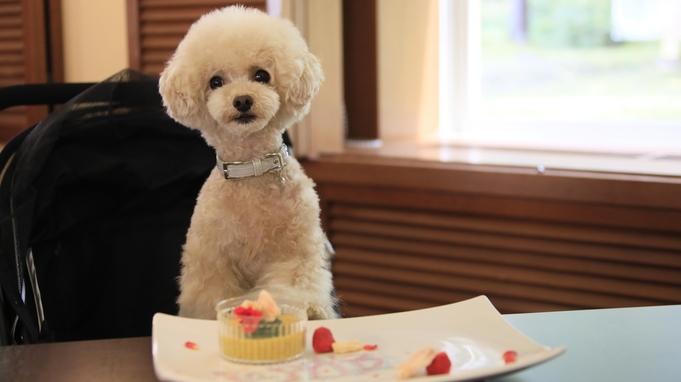 【わんわんAnniversary】お誕生日や記念日に!愛犬用ケーキでお祝い<風コース★2食付>