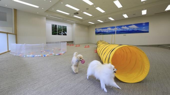 【お部屋食タイムセール】3室限定で10%オフ!周りを気にせず愛犬との時間<カジュアルプラン▼2食付>