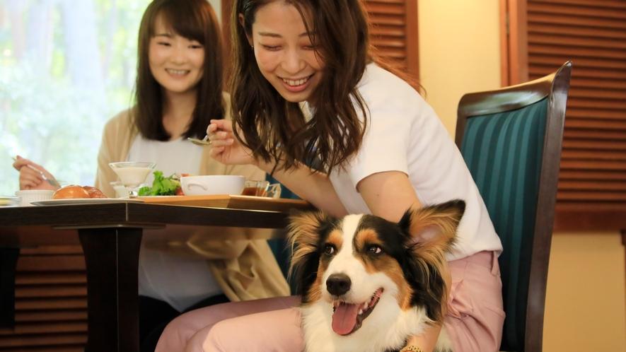 レストランも愛犬同伴OK!