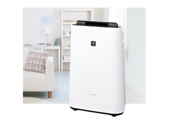 【全室設置】プラズマクラスター7000 加湿空気洗浄機設置