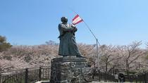 風頭公園 坂本龍馬之像の桜