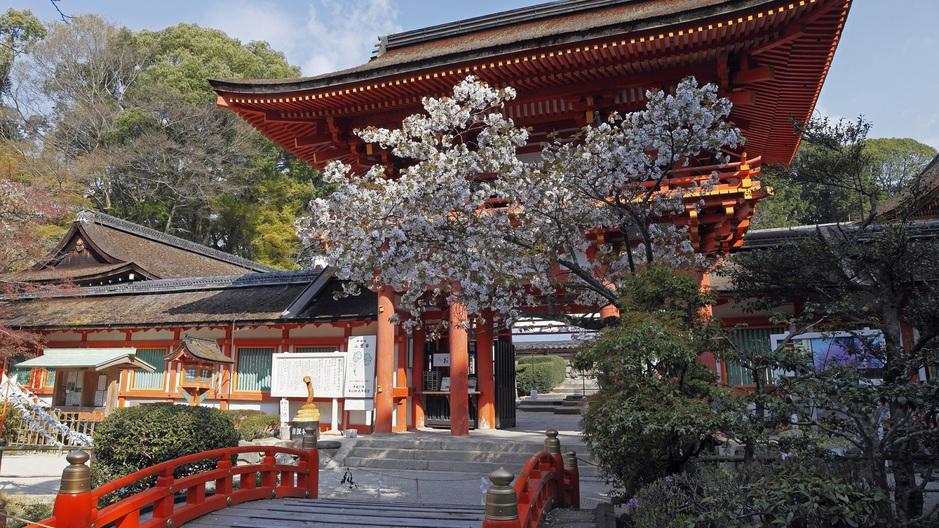 【京都観光】厄除けで有名「上賀茂神社」