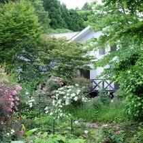 正面の庭から撮った画像です。