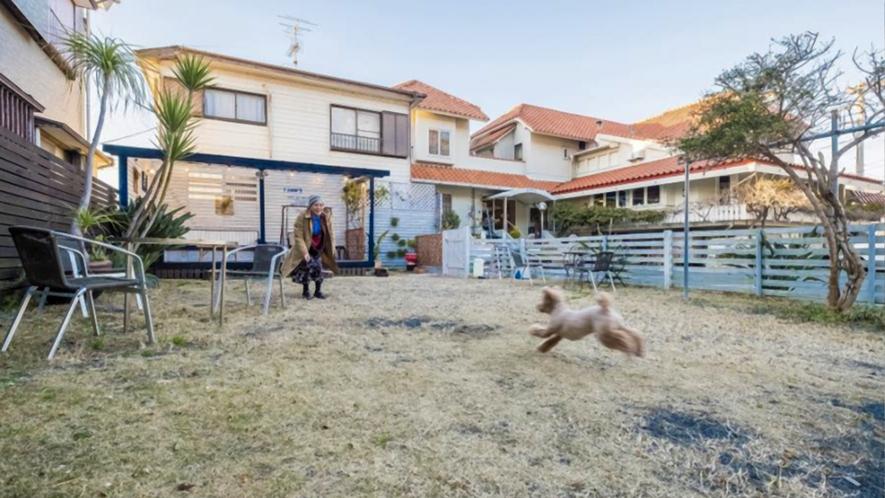 【ドッグラン】宿に併設された広さ70坪のドッグラン 屋根付きの大きなウッドデッキあり