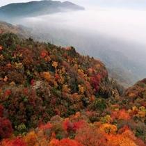 日本三大渓谷美「寒霞渓」