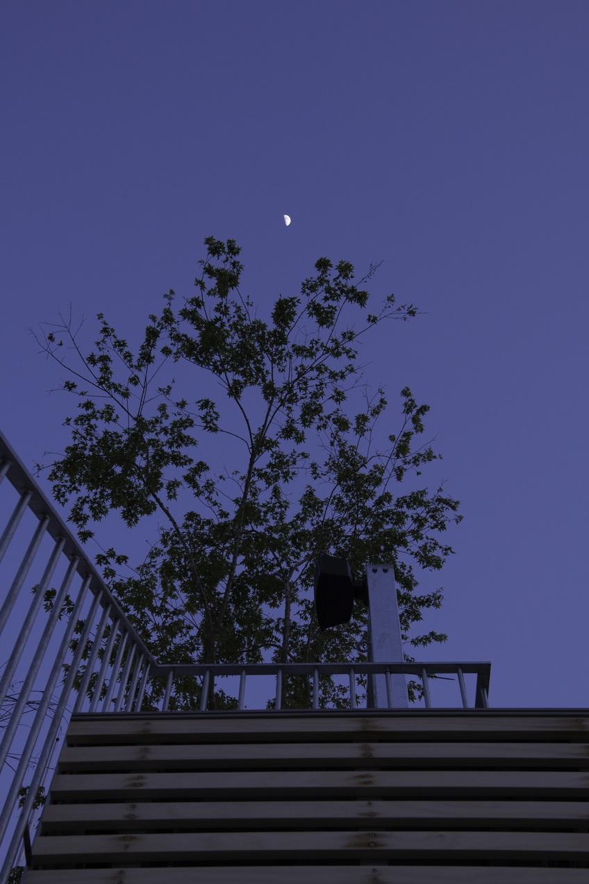 グランピングからは夜空を一望できます。