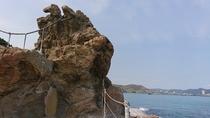 仁右衛門島②