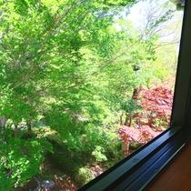 2階の和室8畳からの眺め