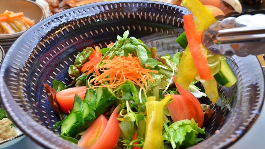 【朝食】新鮮野菜のサラダ